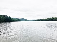 Daintree River Cruises, TROPICAL NORTH QUEENSLAND // @lifemoreblessed