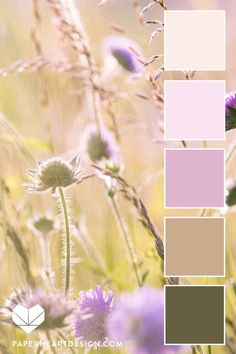 Color Palette: You Can Learn a Lot of Things From the Flowers Paper Heart Design Color Schemes Colour Palettes, Colour Pallete, Color Combos, Color Psychology, Psychology Meaning, Psychology Studies, Psychology Facts, Pallet Painting, Design Seeds