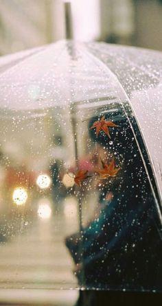 rain + autumn leaves on a clear umbrella Clear Umbrella, Under My Umbrella, Rain Umbrella, Transparent Umbrella, Bubble Umbrella, Walking In The Rain, Singing In The Rain, Rainy Morning, Rainy Days