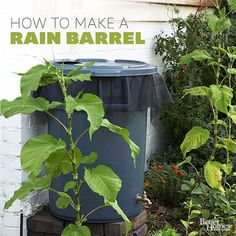 You can use rain water in your gardens thanks to this DIY rain barrel. Learn how to build a rain barrel to save water and to save money. Your plants will get the hydration they need, and your budget will be happy too.