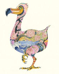 Flamingo - Print - The DM Collection Watercolor Illustration, Watercolor Paintings, Owl Paintings, World Mythology, Ostriches, Flightless Bird, Flamingo Print, Japanese Prints, Arts And Crafts Movement