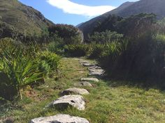 10 pictures of the Harold Porter National Botanical Garden on the Whale Route. National Botanical Gardens, 10 Picture, Nature Reserve, South Africa, Whale, November, Coast, Country Roads, Ocean