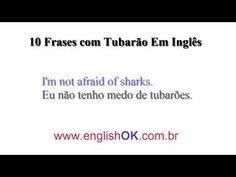 10 Frases com Tubarão Em Inglês   EnglishOk http://www.englishok.com.br/10-frases-com-tubarao-em-ingles/