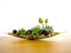 "This pretty little modern terrarium is planted in a sleek glass vessel. Laying on a bed of colorful blue, green and white glass pebbles are bright green lichens. Decorated with teeny pinecones, bright green dried flowers and a cute little artificial acorn. Measures 8.5"" wide by 2"" tall."