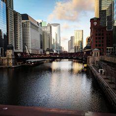 https://www.reddit.com/r/pics/comments/6luwkz/morning_walk_in_chicago/