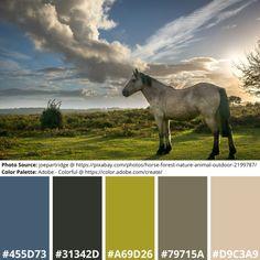 Science Art, Science Nature, Adobe Color Wheel, Color Palette Generator, Online Coloring, Mood Boards, Design Projects, Your Design, Design Inspiration