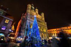 fot. Karol Tuśnio #christmastree #lights