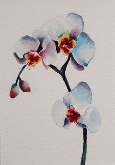 Original watercolor painting - orchids  on Etsy,