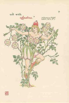 Eglantine page 29 by Walter Crane, flowers from Shakespeare's garden, 1906