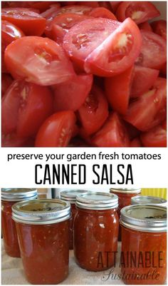 Garden Flowers - Annuals Or Perennials This Simple Salsa Recipe Is A Good Beginner Recipe For Home Canning. It's One Of Our Favorite Ways To Preserve The Summer Tomato Bounty. The Best Salsa Recipe For Canning, Canning Salsa, Home Canning, Canning Tips, Salsa Canning Recipes, Simple Salsa Recipe, Easy Canned Salsa Recipe, Guacamole, Pesto
