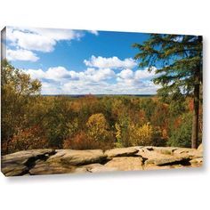 Cody York Virginia Kendall Gallery-Wrapped Canvas, Size: 12 x 18, Blue