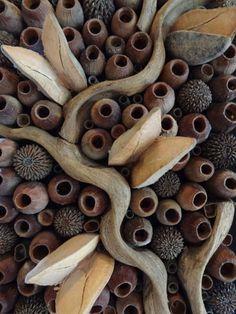 Aus Eco Art: Cardamatis and Saad