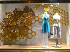 anthropology window - Google Search