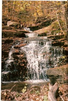 Waterfall a mile down the road from my house  Catskill Mts. Franklin, NY