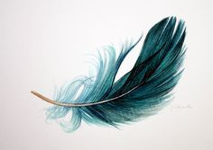 Arches Watercolor Paper, Watercolor Feather, Feather Painting, Feather Art, Feather Tattoos, Abstract Watercolor, Tatoos, Watercolor Paintings, Phenix Tattoo