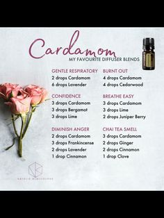 Cardamom-----ooooo love the confidence blend! Essential Oil Perfume, Essential Oil Diffuser Blends, Doterra Oils, Doterra Essential Oils, Doterra Diffuser, Doterra Blends, Diffuser Recipes, Bergamot, Aromatherapy
