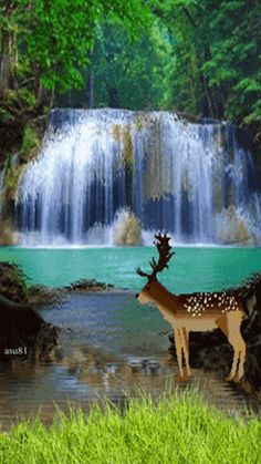 91 Best RIVERS Of LIVING WATER...God Given Beauty As The WATER FLOWS.  St.John 7:38 ❤ ❤ ❤ Images On Pinterest In 2018 | Beautiful Landscapes, ...