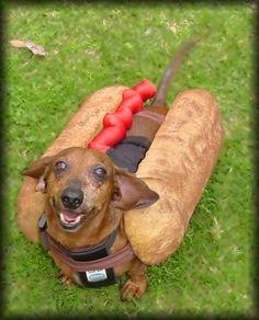 Hot dog - Halloween
