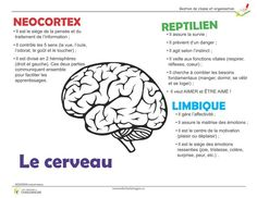 Coaching Questions, French Language Lessons, Infographic Powerpoint, Medicine Student, Brain Gym, Quote Citation, School Hacks, Psychology, Communication