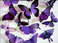 a beautiful lilac butterfly in lilac skies 7911918 Purple Love, All Things Purple, Shades Of Purple, Deep Purple, Purple Stuff, Purple Art, Magenta, Mauve, Butterfly Photos