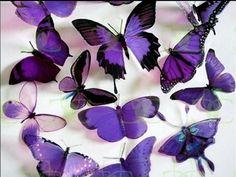 purple butterflies wallpaper - Buscar con Google