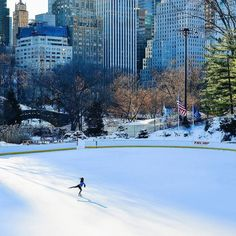 NYC Daily Pics (@NYCDailyPics)   Твиттер