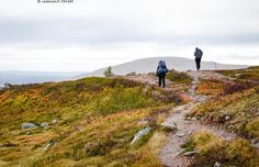Vaeltajat tunturissa - Lappi Lapissa Lapin luonto luonnossa tunturi tunturijono…