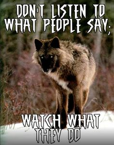 Save Gray Wolf, buy quality products and provide wolf sanctuary!🐺Check out get awesome designs & products to express your LOVE to - Wisdom Quotes, True Quotes, Great Quotes, Motivational Quotes, Inspirational Quotes, Wolf Qoutes, Lone Wolf Quotes, Wolf Spirit Animal, She Wolf