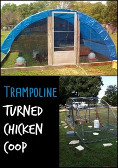 Have you got a trampoline that could do with a new life? Why not turn it into a chicken coop!