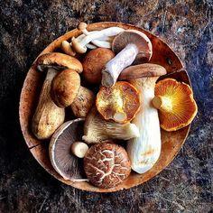 #Repost @david_loftus What's yžtour favourite mushroom ? Big love JO X X X