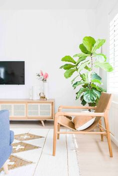 A large fiddle leaf fig breathes life into this coastal guest house. Interior Walls, Decor Interior Design, Interior Decorating, Decorating Ideas, Palm Leaf Wallpaper, Pink Wallpaper, Modern Coastal, Coastal Style, Take You Home