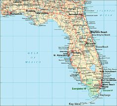 2138 Best Florida images