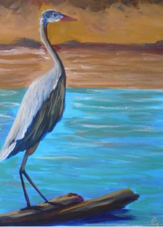 Click to close image, click and drag to move. Use arrow keys for next and previous. Pelican Art, Shorebirds, Water Life, Life Drawing, Beach Art, Arrow Keys, Close Image, Rivers, Lakes