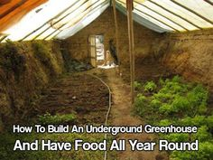 How To Build An Underground Greenhouse And Have Food All Year Round