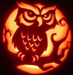 Owl Pumpkin Carving, Halloween Pumpkin Carving Stencils, Scary Halloween Pumpkins, Pumpkin Carving Templates, Halloween Tags, Spooky Pumpkin, Theme Halloween, Carving Pumpkins, Pumpkin Ideas
