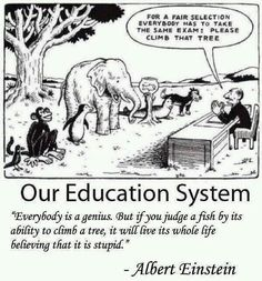 #indian education system. ..