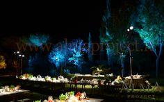 ALMA Project @ Grosseto (Villa Privata - Lighting Buffet Table Palco lucciole 12