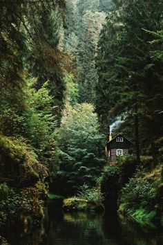 Cabin house in hidden forest woods magical places Great Places, Places To Go, Beautiful Places, House Beautiful, Camping Photography, Landscape Photography, Photography Sky, Landscape Art, Cabin In The Woods