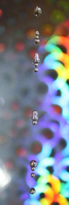 Water drops in rainbow