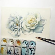 White roses. Process. 🌹🎨