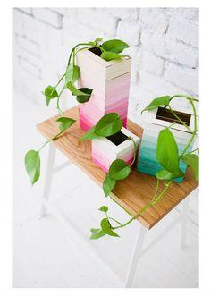 Vaso de plantas com palito de picolé