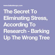 The Secret To Eliminating Stress, According To Research - Barking Up The Wrong Tree