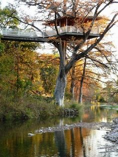Frio River Treetop - Fully Furnished Family-Friendly Vacation House in the Texas Hill Country. sleeps 22 total in two houses which are rented together