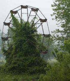 Ferris Wheel Covered In Moss, Lake Shwanee