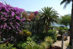 Italy, Gardens and Parks: Villa Rufolo