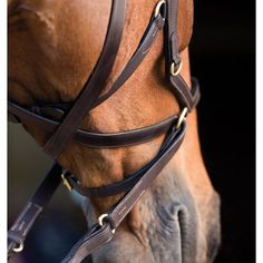 Rambo by Horseware Micklem MultiBridle and Bitless and other Specialty Bridles | EquestrianCollections MOBILE