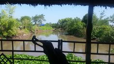 View from homestay Nguyen Shack Can Tho