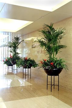 flower containers | Greens By White Corporate Plant Rental and Special Events