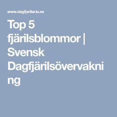 Top 5 fjärilsblommor | Svensk Dagfjärilsövervakning