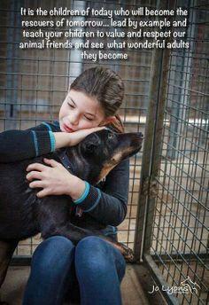 Facebook.com/SoDogGoneFunny & SoDogGoneFunny.com rescue, adoption,